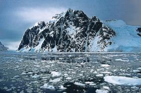 Iceberg and Fauna, Antarctica Photos, Antarctica