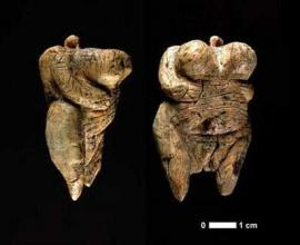 Sexy Venus may be oldest figurine yet discovered